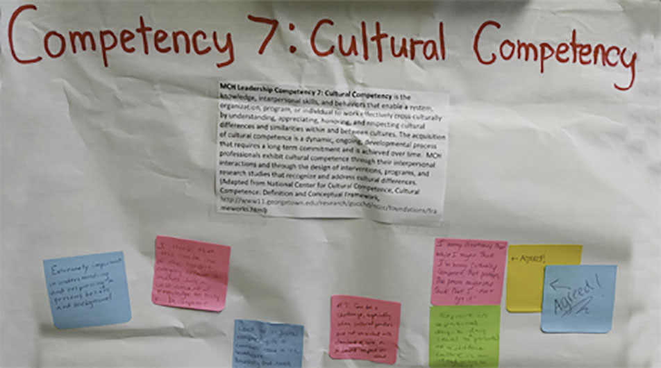 cultural competency LEND project